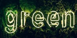 An illuminated green neon sign representing sustainability